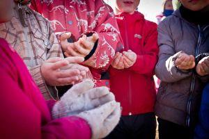 enfant-qui-nourrit-les-oiseaux-eau-vive